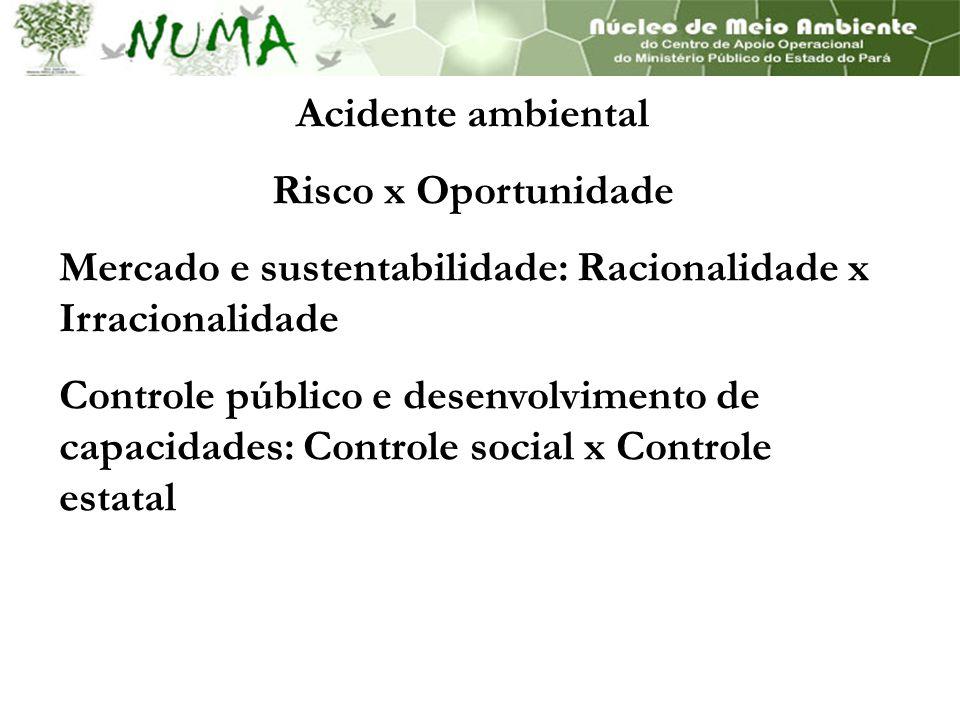 Acidente ambiental Risco x Oportunidade Mercado e sustentabilidade: Racionalidade x Irracionalidade Controle público e desenvolvimento de capacidades: Controle social x Controle estatal