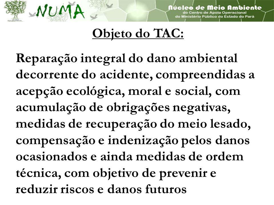 Objeto do TAC: Reparação integral do dano ambiental decorrente do acidente, compreendidas a acepção ecológica, moral e social, com acumulação de obrig