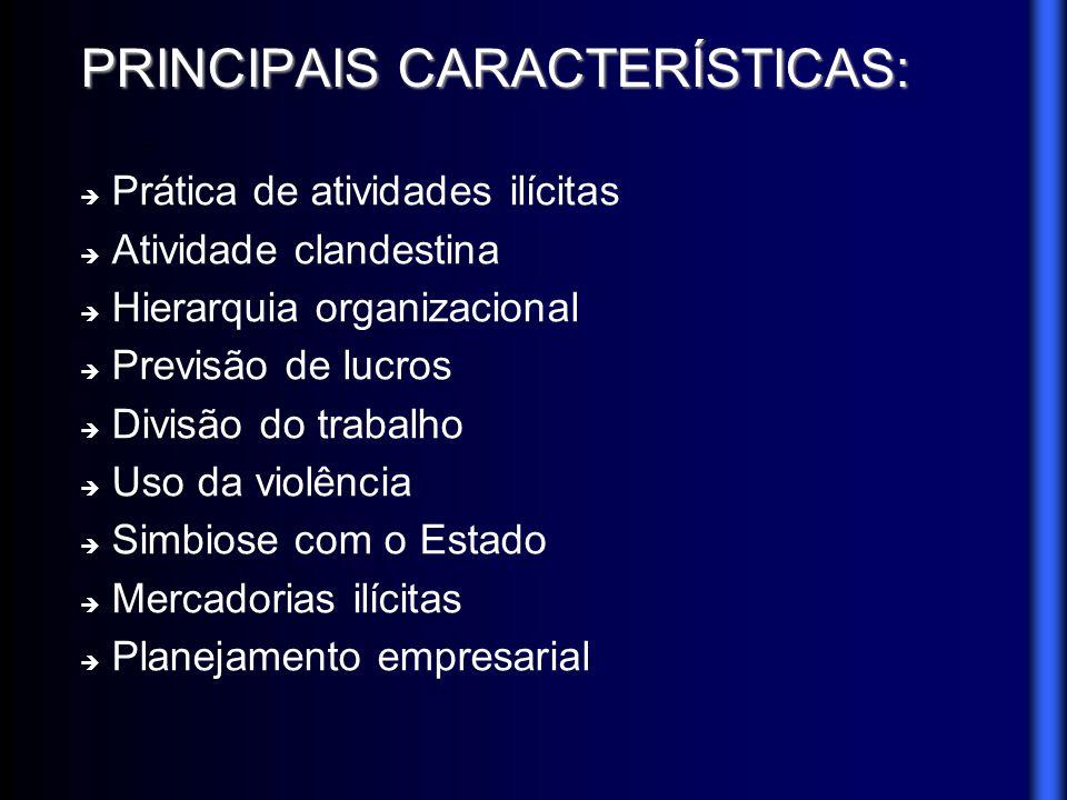 PRINCIPAIS CARACTERÍSTICAS: Prática de atividades ilícitas Atividade clandestina Hierarquia organizacional Previsão de lucros Divisão do trabalho Uso