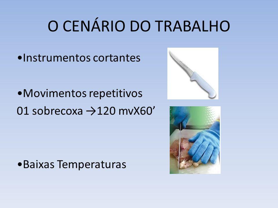 O CENÁRIO DO TRABALHO Instrumentos cortantes Movimentos repetitivos 01 sobrecoxa 120 mvX60 Baixas Temperaturas