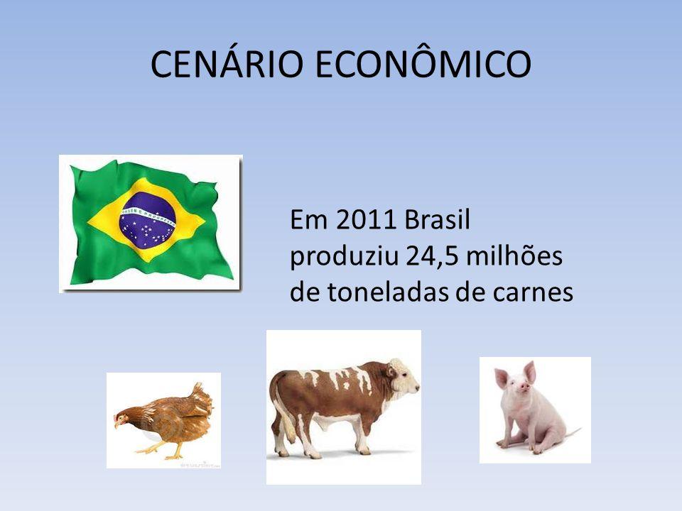 CENÁRIO ECONÔMICO Em 2011 Brasil produziu 24,5 milhões de toneladas de carnes