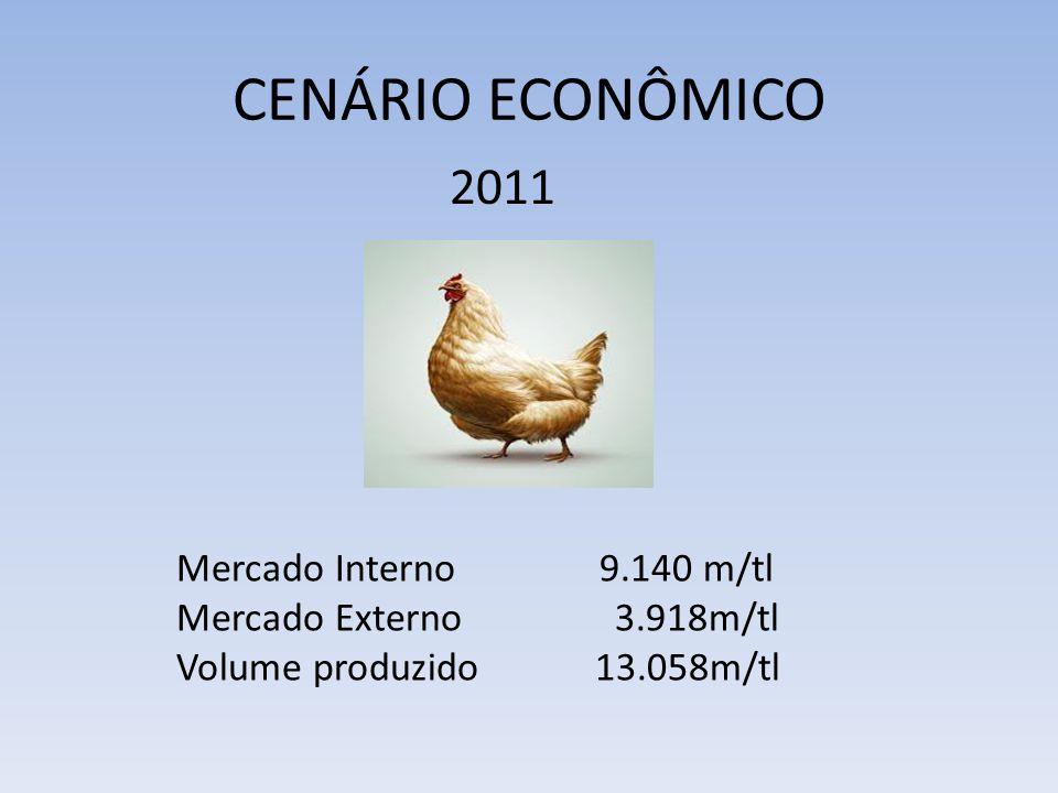 CENÁRIO ECONÔMICO Mercado Interno9.140 m/tl Mercado Externo 3.918m/tl Volume produzido 13.058m/tl 2011
