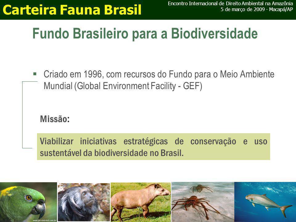 Fundo Brasileiro para a Biodiversidade Criado em 1996, com recursos do Fundo para o Meio Ambiente Mundial (Global Environment Facility - GEF) Viabilizar iniciativas estratégicas de conservação e uso sustentável da biodiversidade no Brasil.