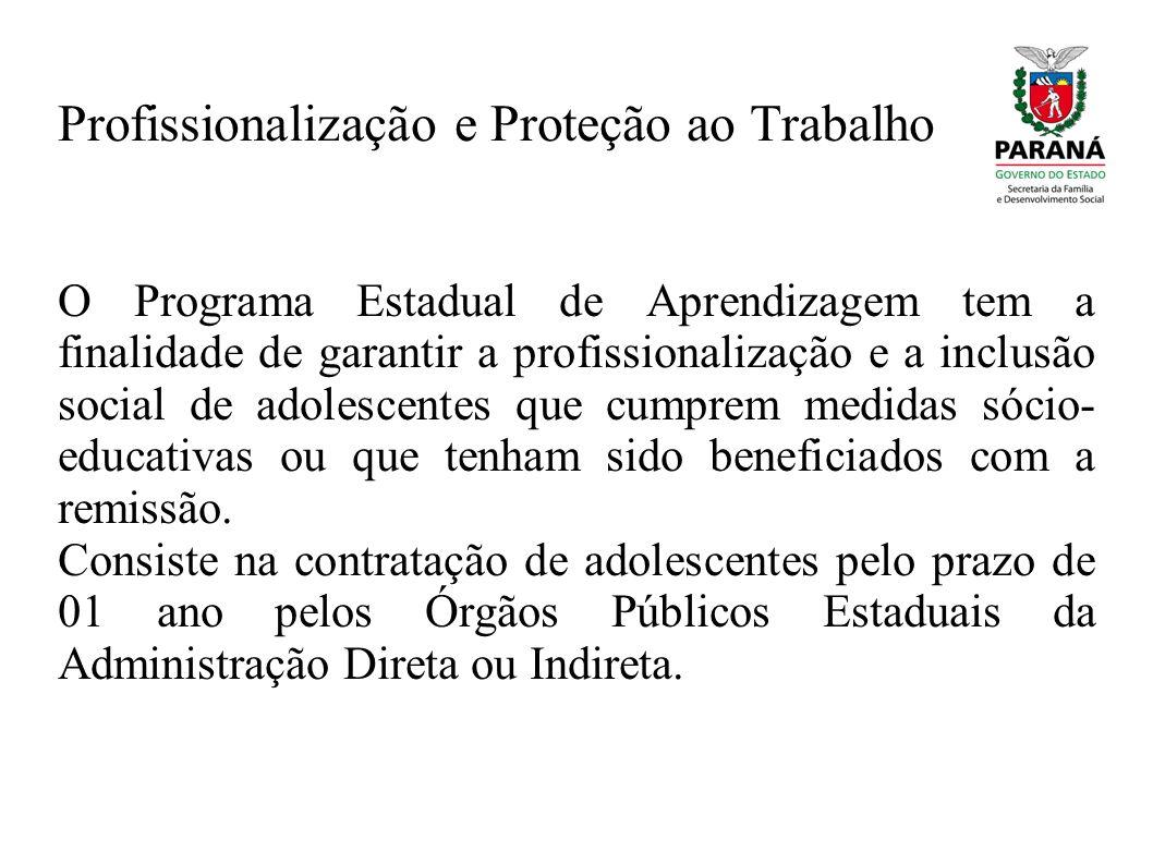 Profissionalização e Proteção ao Trabalho O Programa Estadual de Aprendizagem tem a finalidade de garantir a profissionalização e a inclusão social de