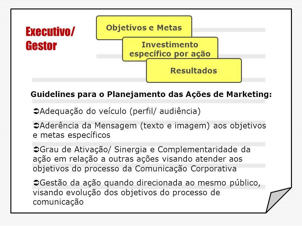 Executivo/ Gestor Objetivos e Metas Investimento específico por ação Resultados Guidelines para o Planejamento das Ações de Marketing: Adequação do ve