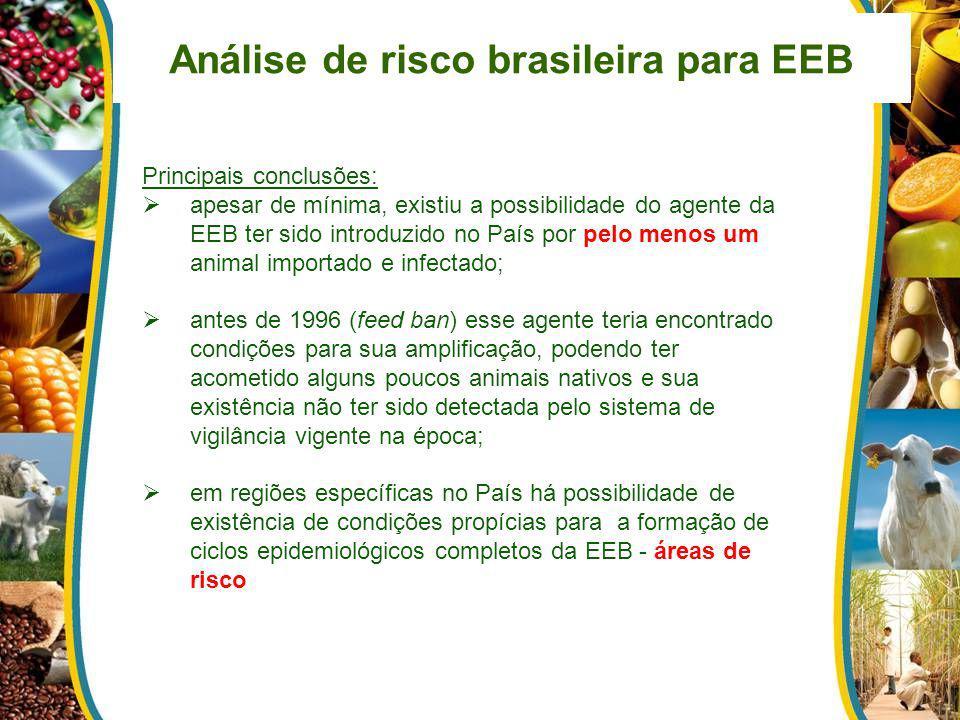 Análise de risco brasileira para EEB Principais conclusões: apesar de mínima, existiu a possibilidade do agente da EEB ter sido introduzido no País po
