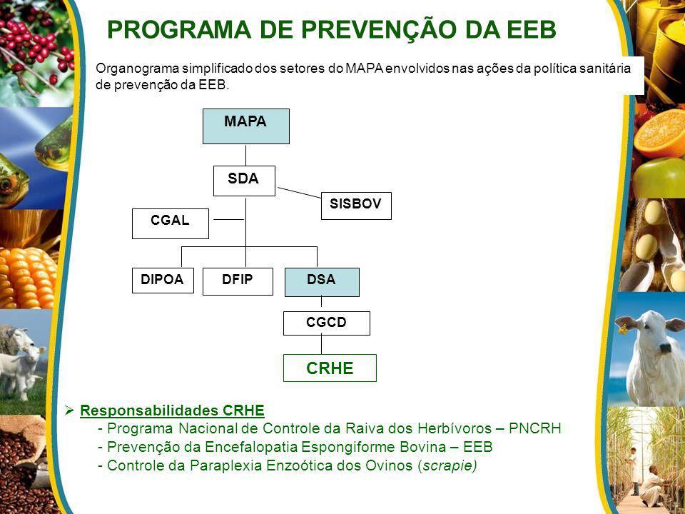 CGAL DSA SDA DIPOADFIP CRHE SISBOV MAPA CGCD Organograma simplificado dos setores do MAPA envolvidos nas ações da política sanitária de prevenção da E