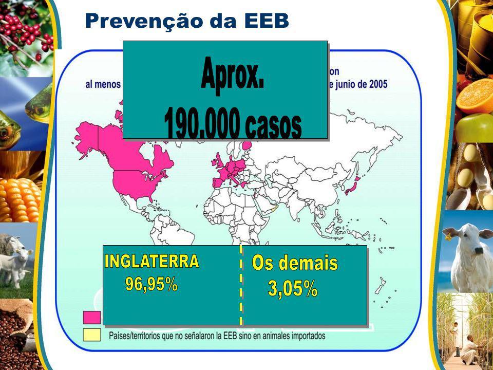 Prevenção da EEB