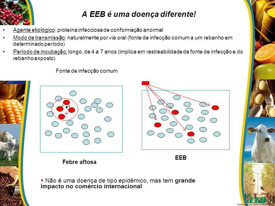 A EEB é uma doença diferente! Agente etiológico: proteína infecciosa de conformação anormal Modo de transmissão: naturalmente por via oral (fonte de i