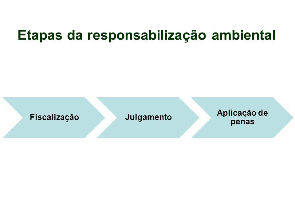 Etapas da responsabilização ambiental FiscalizaçãoJulgamento Aplicação de penas
