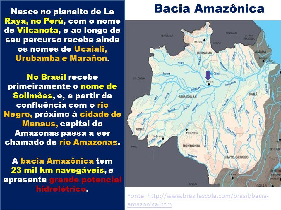 Bacia Amazônica Nasce no planalto de La Raya, no Perú, com o nome de Vilcanota, e ao longo de seu percurso recebe ainda os nomes de Ucaiali, Urubamba