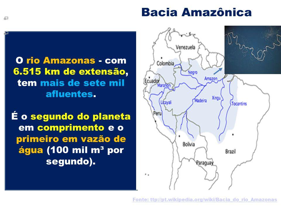 Bacia Amazônica O rio Amazonas - com 6.515 km de extensão, tem mais de sete mil afluentes. É o segundo do planeta em comprimento e o primeiro em vazão