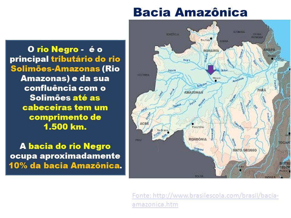 Bacia Amazônica O rio Negro - é o principal tributário do rio Solimões-Amazonas (Rio Amazonas) e da sua confluência com o Solimões até as cabeceiras t