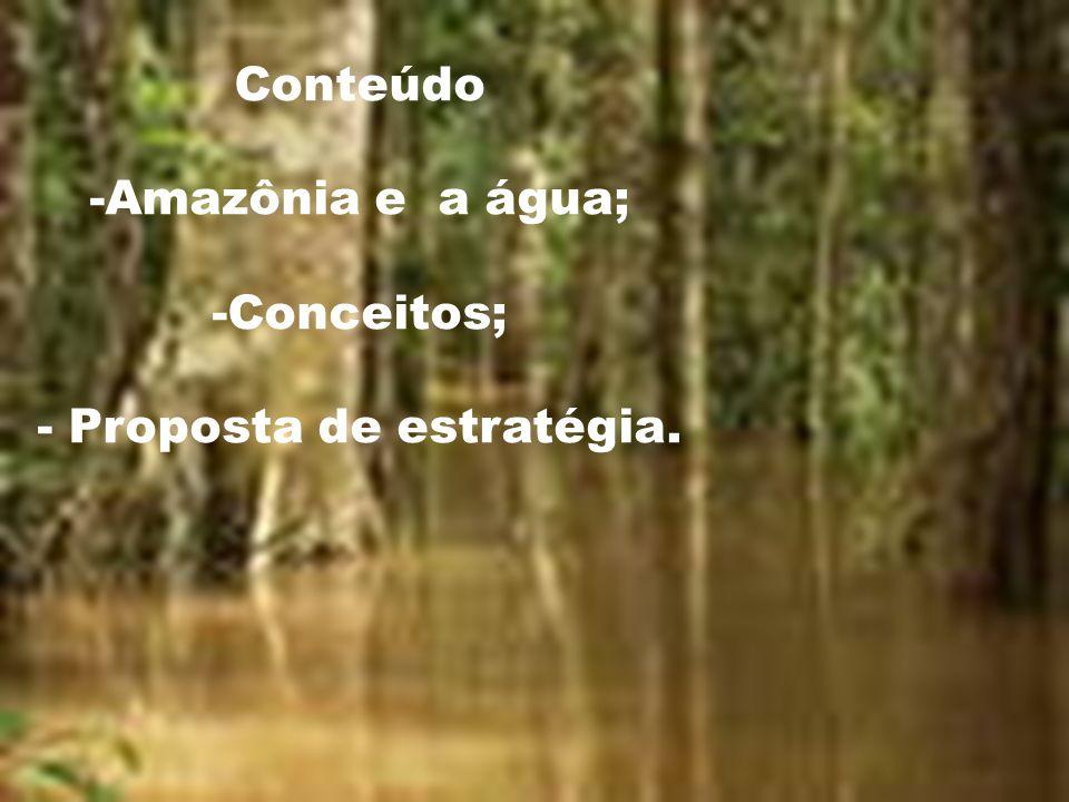 A BACIA AMAZÔNICA NO BRASIL ESTADOSÁrea (km2)Part.