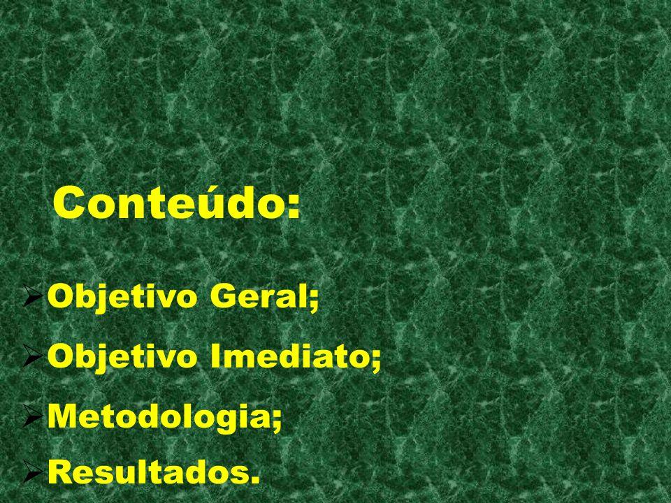 Conteúdo: Objetivo Geral; Objetivo Imediato; Metodologia; Resultados.