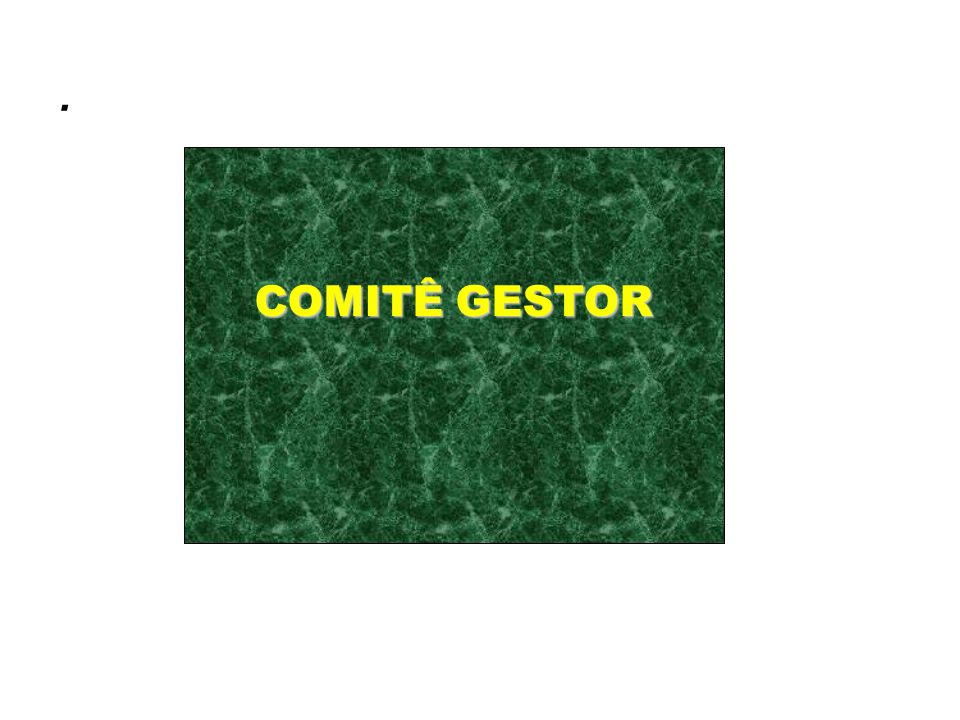 . COMITÊ GESTOR