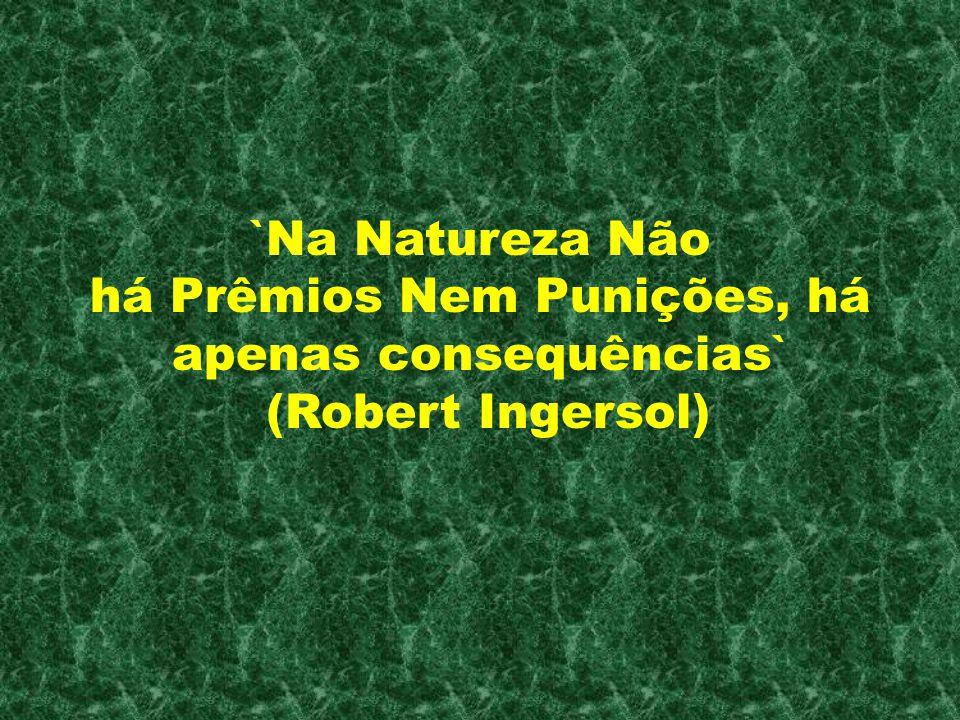 . `Na Natureza Não há Prêmios Nem Punições, há apenas consequências` (Robert Ingersol)