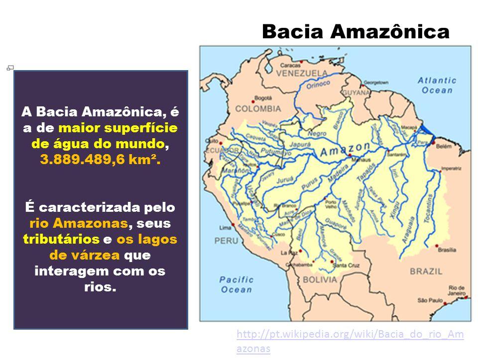 Bacia Amazônica A Bacia Amazônica, é a de maior superfície de água do mundo, 3.889.489,6 km². É caracterizada pelo rio Amazonas, seus tributários e os