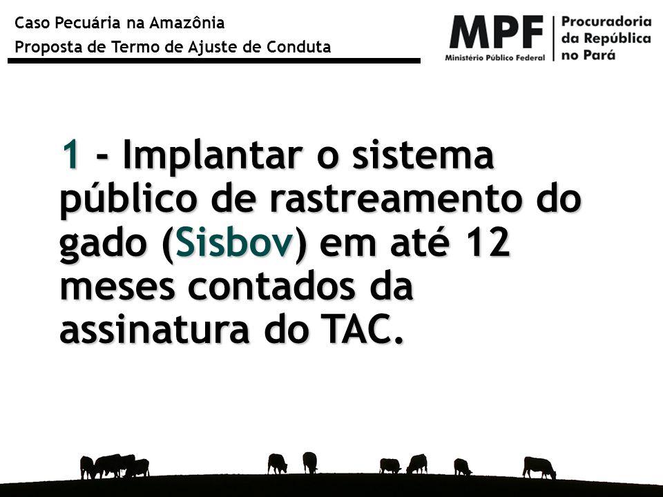 Caso Pecuária na Amazônia Proposta de Termo de Ajuste de Conduta 1 - Implantar o sistema público de rastreamento do gado (Sisbov) em até 12 meses cont