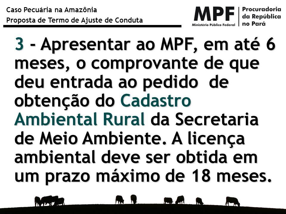 Caso Pecuária na Amazônia Proposta de Termo de Ajuste de Conduta 3 - Apresentar ao MPF, em até 6 meses, o comprovante de que deu entrada ao pedido de