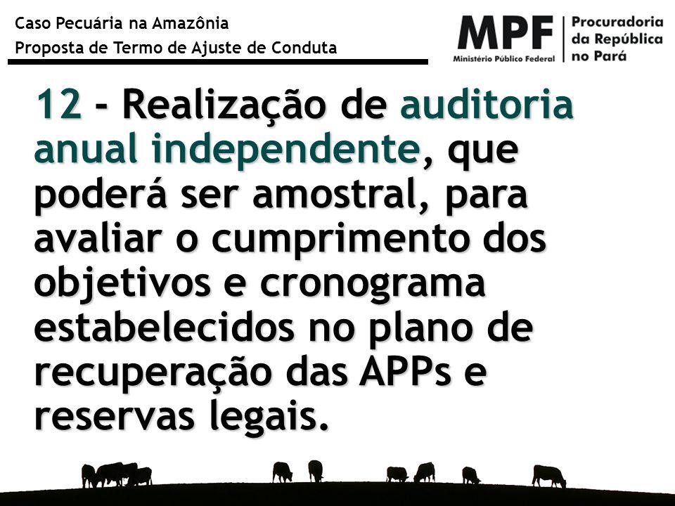 Caso Pecuária na Amazônia Proposta de Termo de Ajuste de Conduta 12 - Realização de auditoria anual independente, que poderá ser amostral, para avalia