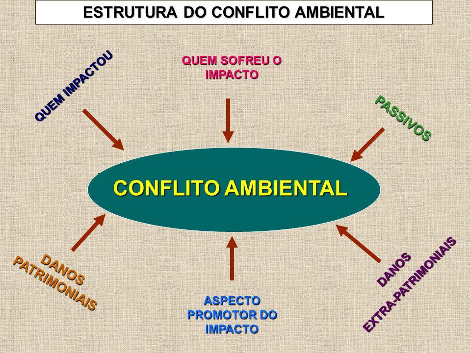 CONFLITO AMBIENTAL QUEM IMPACTOU QUEM SOFREU O IMPACTO ASPECTO PROMOTOR DO IMPACTO PASSIVOS DANOS PATRIMONIAIS DANOSEXTRA-PATRIMONIAIS ESTRUTURA DO CONFLITO AMBIENTAL