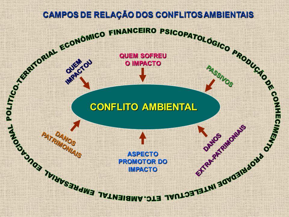 CONFLITO AMBIENTAL QUEM IMPACTOU QUEM SOFREU O IMPACTO ASPECTO PROMOTOR DO IMPACTO PASSIVOS DANOS PATRIMONIAIS DANOSEXTRA-PATRIMONIAIS CAMPOS DE RELAÇÃO DOS CONFLITOS AMBIENTAIS