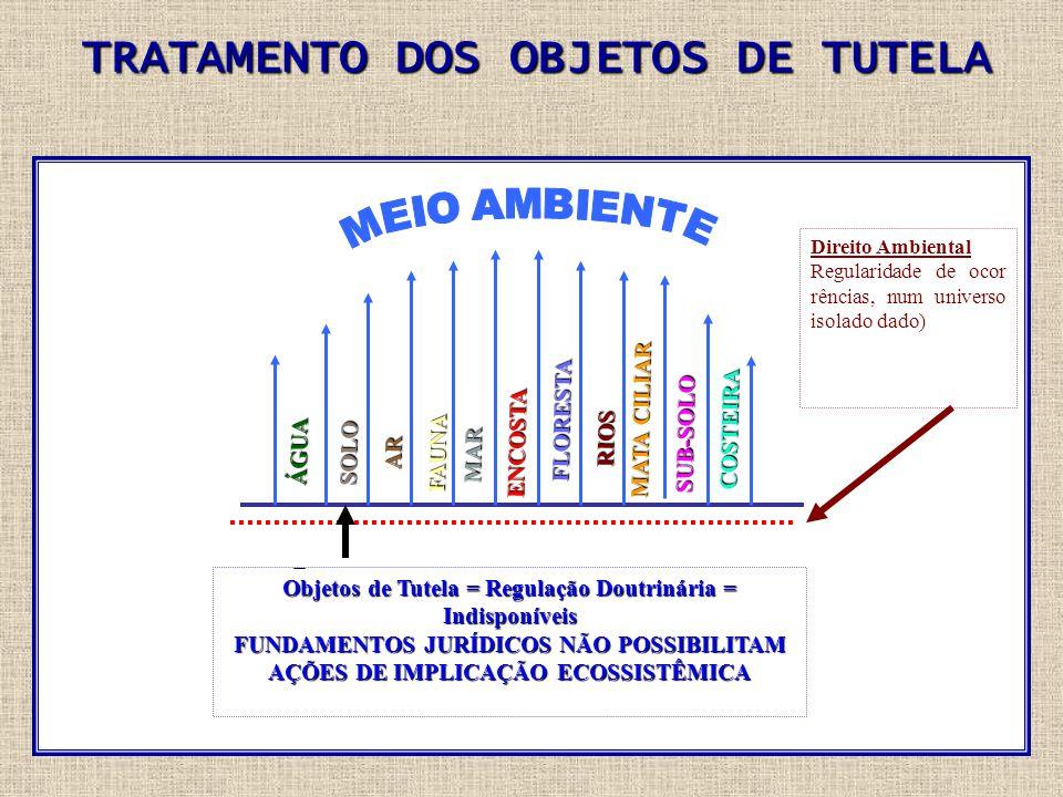 TRATAMENTO DOS OBJETOS DE TUTELA SI N G U L A R Objetos de Tutela = Regulação Doutrinária = Indisponíveis FUNDAMENTOS JURÍDICOS NÃO POSSIBILITAM AÇÕES DE IMPLICAÇÃO ECOSSISTÊMICA Direito Ambiental Regularidade de ocor rências, num universo isolado dado) ÁGUA SOLO FLORESTA RIOS MATA CILIAR SUB-SOLO COSTEIRA FAUNA AR MAR ENCOSTA