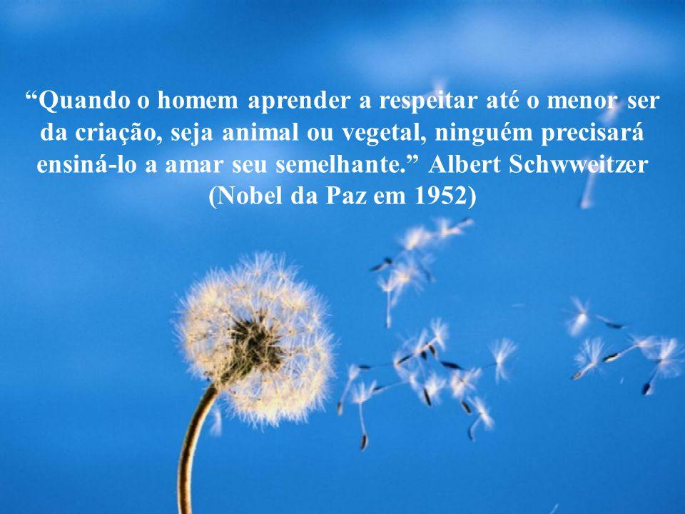 Quando o homem aprender a respeitar até o menor ser da criação, seja animal ou vegetal, ninguém precisará ensiná-lo a amar seu semelhante. Albert Schw
