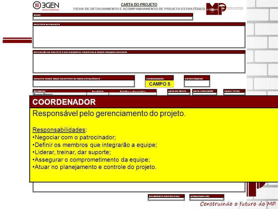 9 CAMPO 5 COORDENADOR Responsável pelo gerenciamento do projeto.