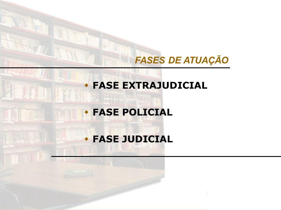 FASES DE ATUAÇÃO FASE EXTRAJUDICIAL FASE POLICIAL FASE JUDICIAL