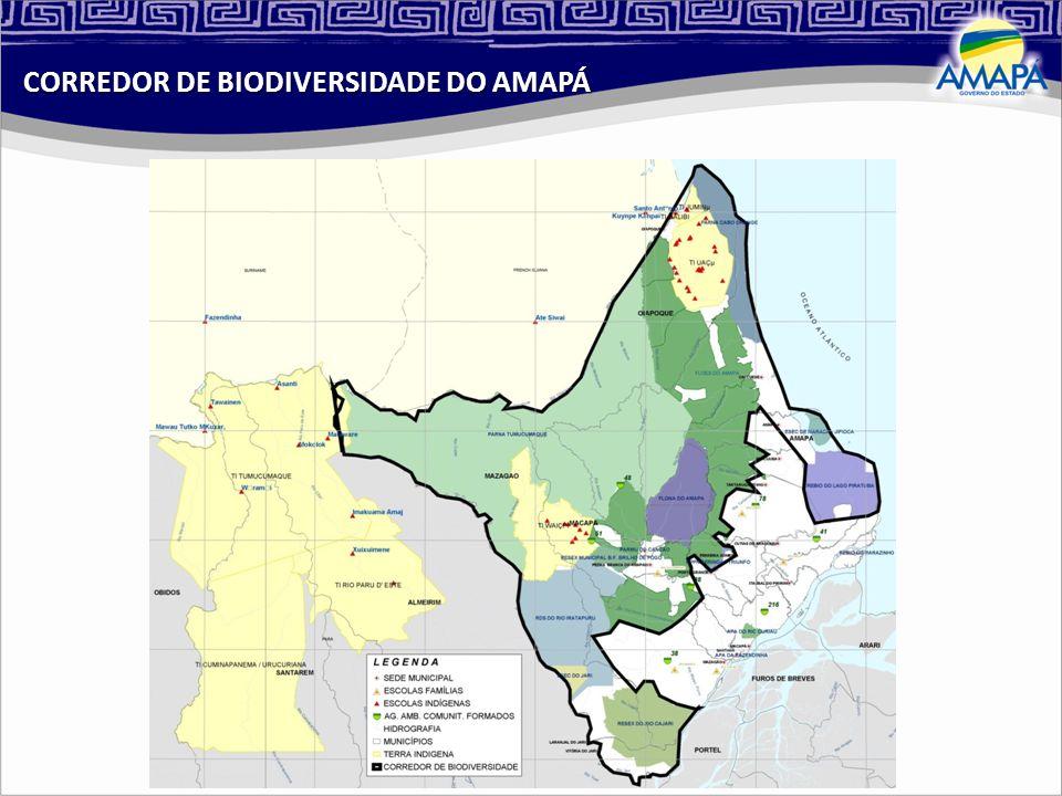 CORREDOR DE BIODIVERSIDADE DO AMAPÁ