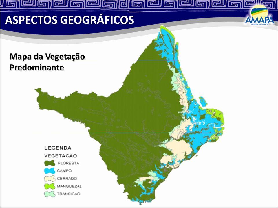 Área: 142.814,585 km² Fronteira: Pará, Guiana Francesa e Suriname Municípios: 16 98% da cobertura vegetal preservada População: 594.587 hab. (IBGE/200
