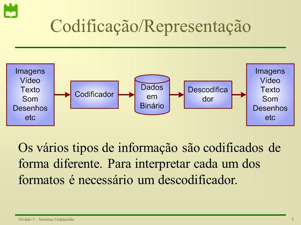 8Módulo 5– Sistemas Multimédia Codificação/Representação Os vários tipos de informação são codificados de forma diferente. Para interpretar cada um do