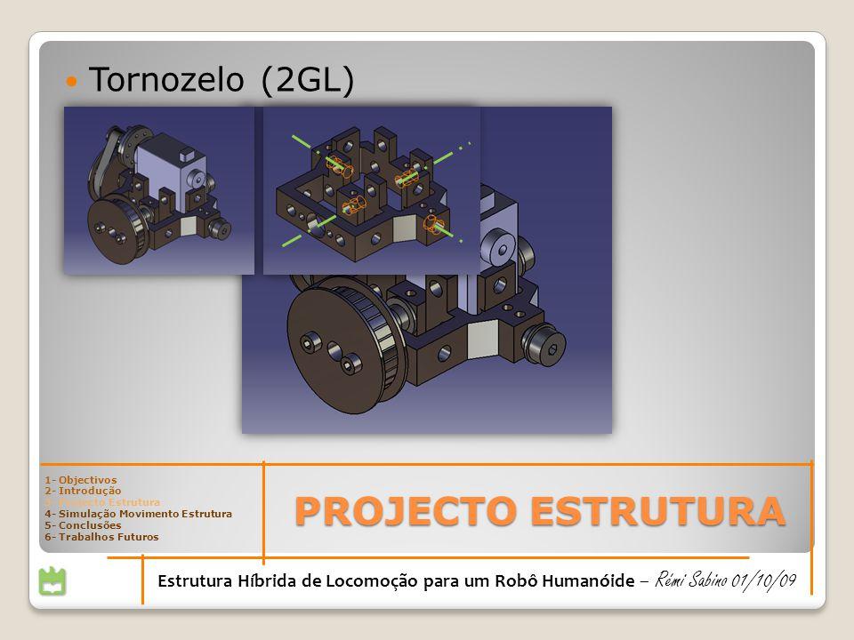 PROJECTO ESTRUTURA Estrutura Híbrida de Locomoção para um Robô Humanóide – Rémi Sabino 01/10/09 Tornozelo (2GL) 1- Objectivos 2- Introdução 3- Projecto Estrutura 4- Simulação Movimento Estrutura 5- Conclusões 6- Trabalhos Futuros