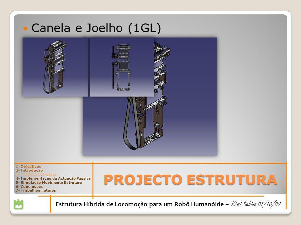 PROJECTO ESTRUTURA 1- Objectivos 2- Introdução 3- Projecto Estrutura 4- Implementação da Actuação Passiva 5- Simulação Movimento Estrutura 6- Conclusões 7- Trabalhos Futuros Estrutura Híbrida de Locomoção para um Robô Humanóide – Rémi Sabino 01/10/09 Canela e Joelho (1GL)