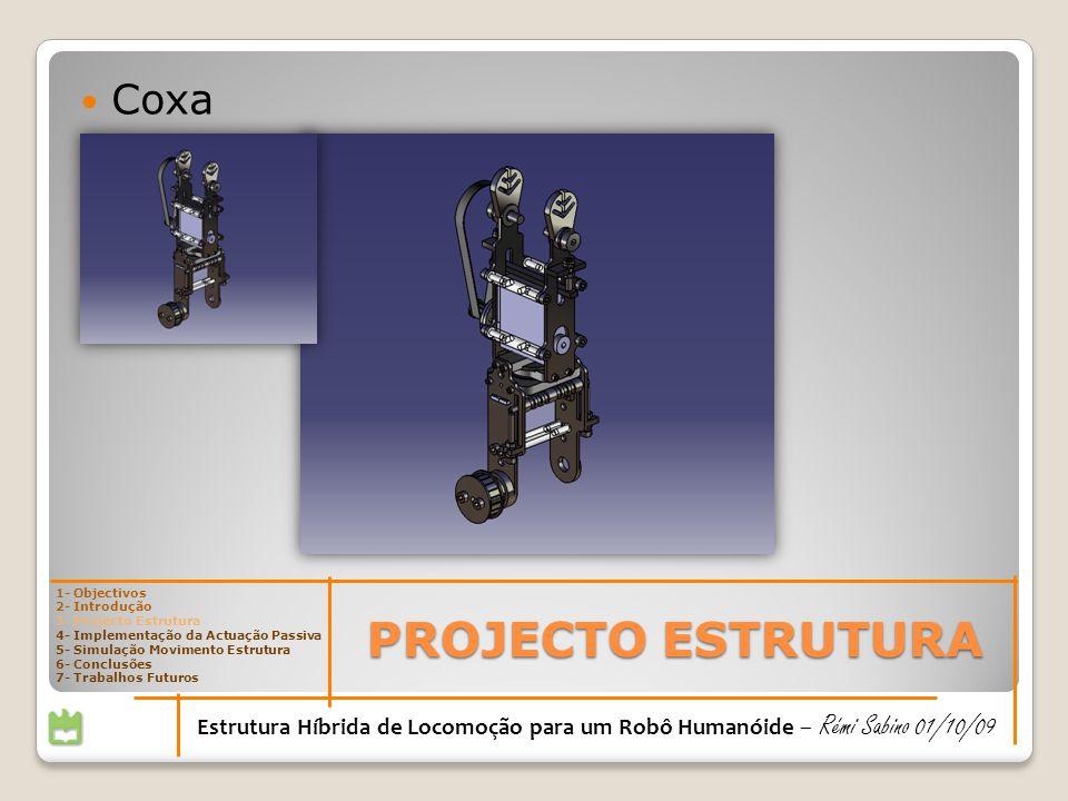 PROJECTO ESTRUTURA 1- Objectivos 2- Introdução 3- Projecto Estrutura 4- Implementação da Actuação Passiva 5- Simulação Movimento Estrutura 6- Conclusões 7- Trabalhos Futuros Estrutura Híbrida de Locomoção para um Robô Humanóide – Rémi Sabino 01/10/09 Coxa