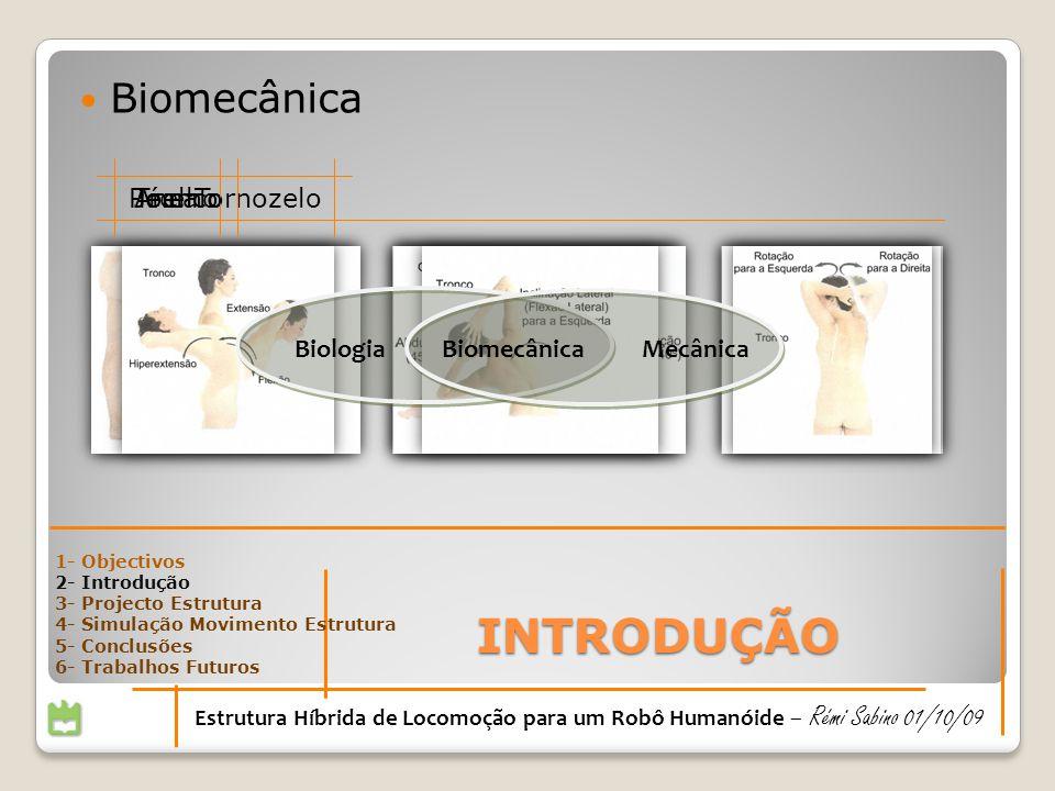 Biomecânica INTRODUÇÃO Estrutura Híbrida de Locomoção para um Robô Humanóide – Rémi Sabino 01/10/09 Pé e TornozeloJoelho BiologiaMecânica Biomecânica AncaTronco 1- Objectivos 2- Introdução 3- Projecto Estrutura 4- Simulação Movimento Estrutura 5- Conclusões 6- Trabalhos Futuros