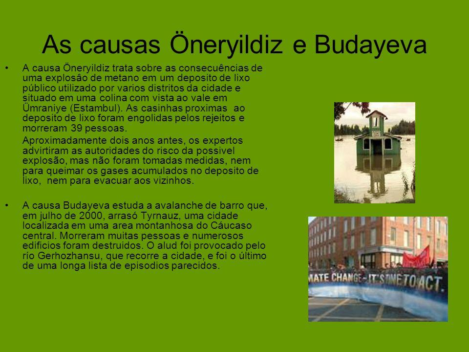 As causas Öneryildiz e Budayeva A causa Öneryildiz trata sobre as consecuências de uma explosâo de metano em um deposito de lixo público utilizado por varios distritos da cidade e situado em uma colina com vista ao vale em Ümraniye (Estambul).