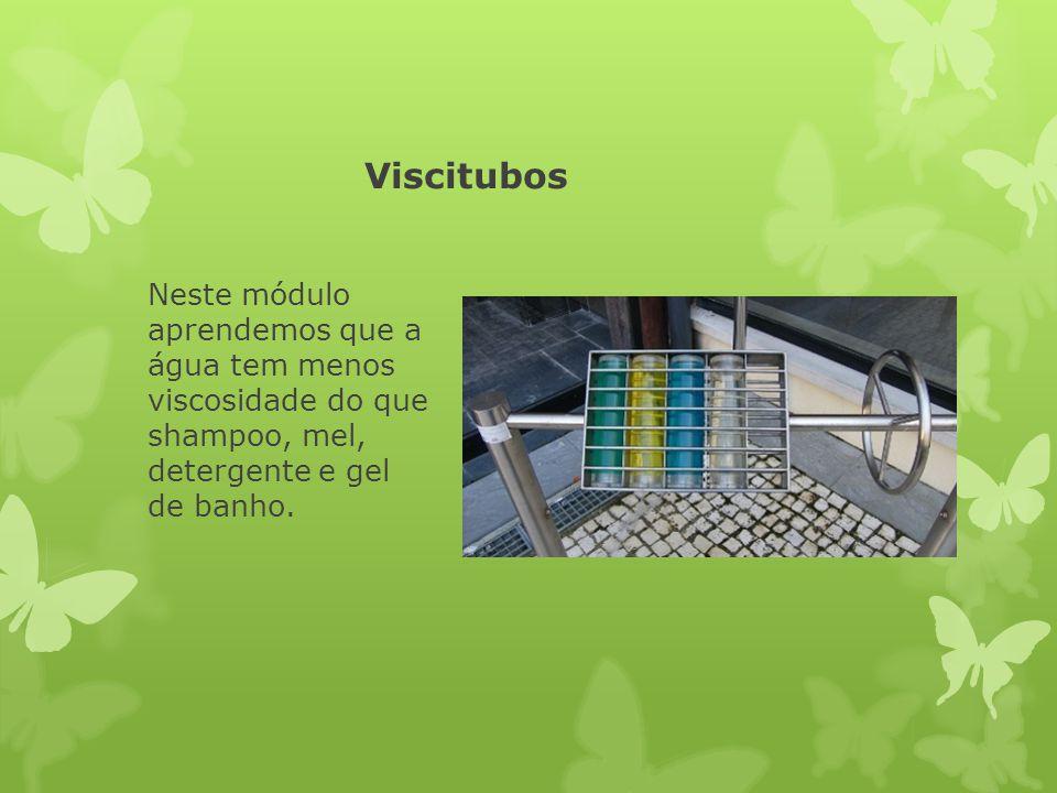 Viscitubos Neste módulo aprendemos que a água tem menos viscosidade do que shampoo, mel, detergente e gel de banho.