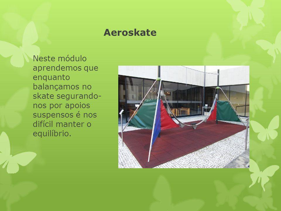 Aeroskate Neste módulo aprendemos que enquanto balançamos no skate segurando- nos por apoios suspensos é nos difícil manter o equilíbrio.