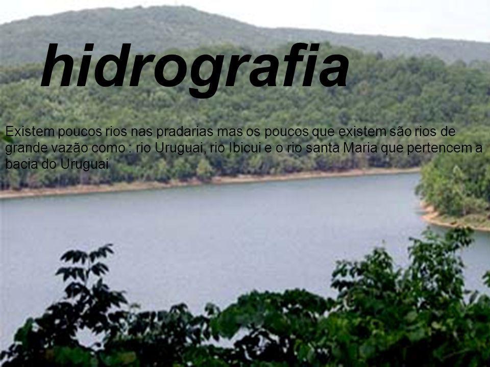 hidrografia Existem poucos rios nas pradarias mas os poucos que existem são rios de grande vazão como : rio Uruguai, rio Ibicui e o rio santa Maria qu