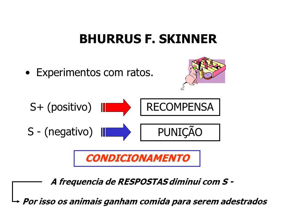 SN (presença do rato) SI (presença do ruído) RI (comportamentos de medo) SC (presença do rato) RC (comportamentos de medo)