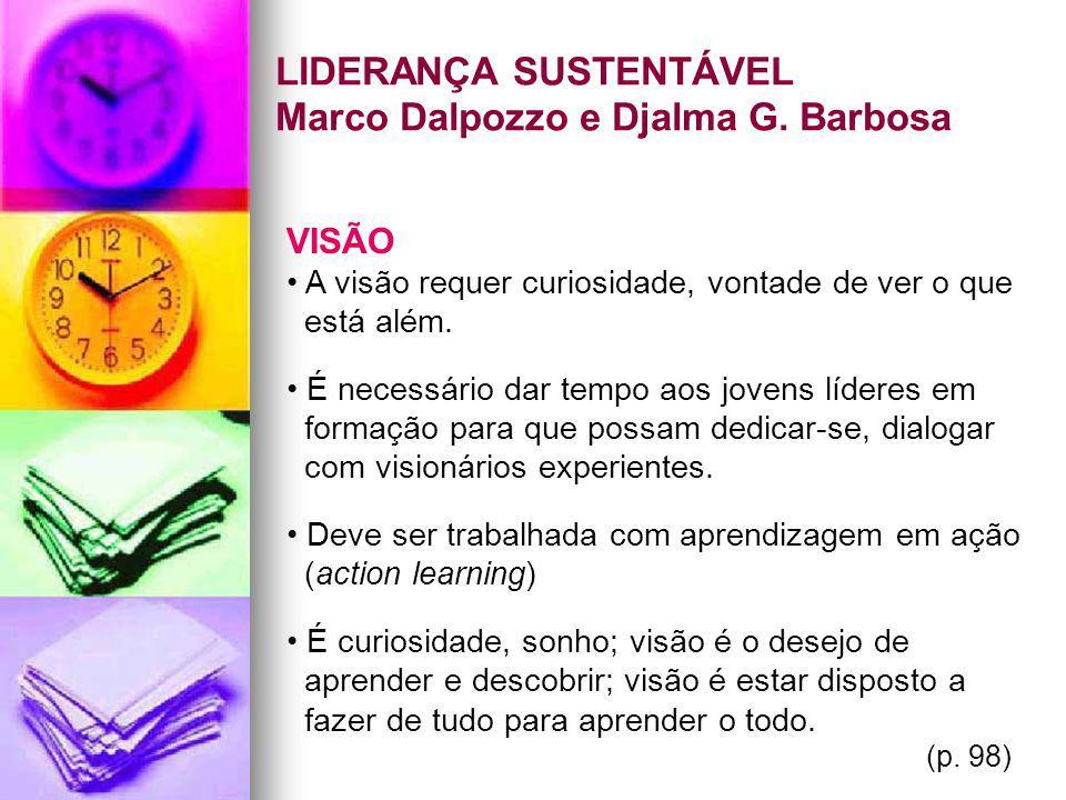 LIDERANÇA SUSTENTÁVEL Marco Dalpozzo e Djalma G. Barbosa VISÃO A visão requer curiosidade, vontade de ver o que está além. É necessário dar tempo aos
