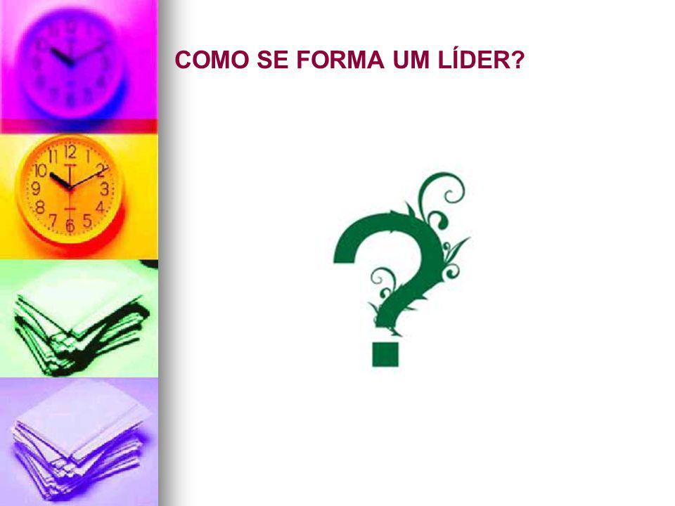 CONVERSAS COM LÍDERES SUSTENTÁVEIS Ricardo Voltolini LIDERANÇA seria: Uma questão de como ser, e não de como fazer.