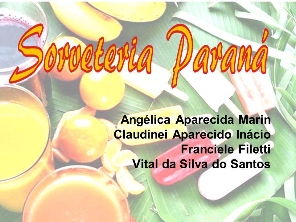Histórico da empresa A empresa foi montada em 1998 Conta com uma matriz localizadas em Piracicaba SP e duas filiais em Tietê SP Composta por 6 colaboradores.