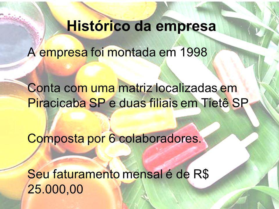 Histórico da empresa A empresa foi montada em 1998 Conta com uma matriz localizadas em Piracicaba SP e duas filiais em Tietê SP Composta por 6 colabor