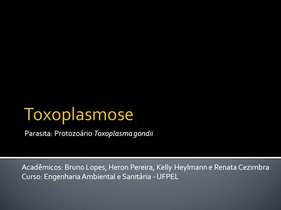 Parasita: Protozoário Toxoplasma gondii Acadêmicos: Bruno Lopes, Heron Pereira, Kelly Heylmann e Renata Cezimbra Curso: Engenharia Ambiental e Sanitária - UFPEL