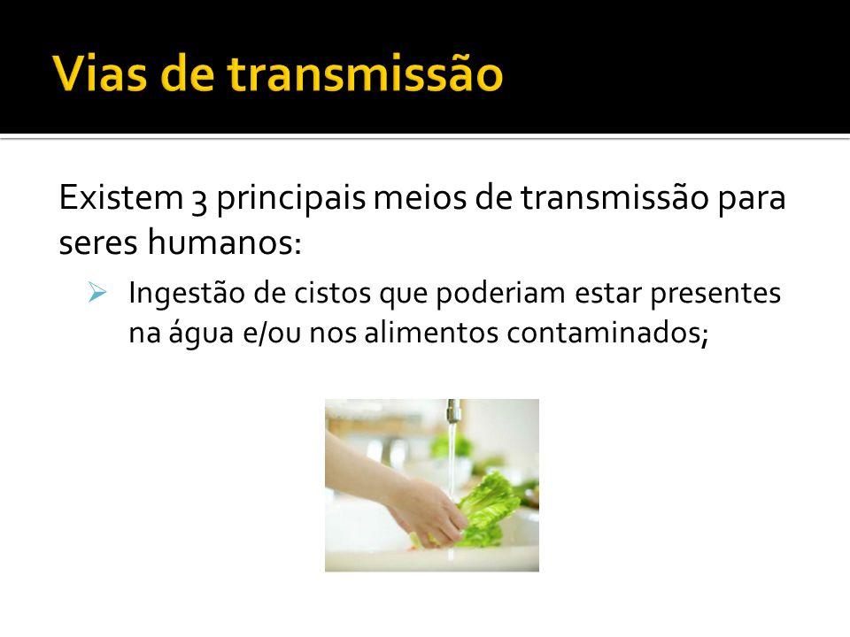 Existem 3 principais meios de transmissão para seres humanos: Ingestão de cistos que poderiam estar presentes na água e/ou nos alimentos contaminados;