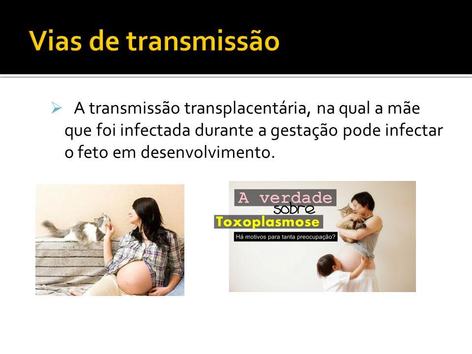 A transmissão transplacentária, na qual a mãe que foi infectada durante a gestação pode infectar o feto em desenvolvimento.
